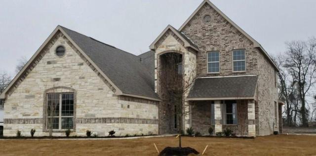 2955 Kate Drive, Farmersville, TX 75442 (MLS #13976177) :: The Heyl Group at Keller Williams