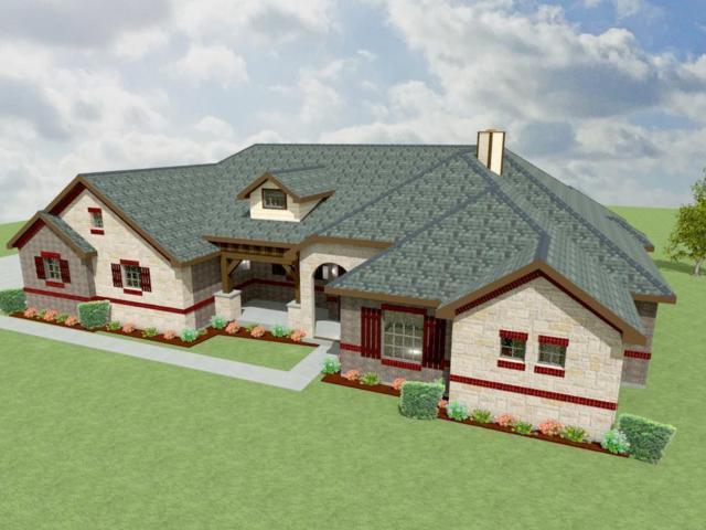 7237 Michelle Pointe, Krum, TX 76249 (MLS #13977364) :: Robbins Real Estate Group
