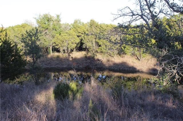 Lot 20 Falcon Drive, Glen Rose, TX 76043 (MLS #13979798) :: The Chad Smith Team