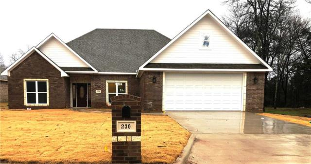 230 Bent Oak Drive, Pottsboro, TX 75076 (MLS #13980777) :: The Heyl Group at Keller Williams