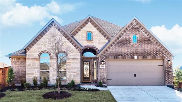 808 Glen Crossing Drive, Celina, TX 75009 (MLS #13987408) :: Kimberly Davis & Associates