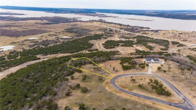1141 Raven Circle, Graford, TX 76449 (MLS #13987719) :: The Chad Smith Team