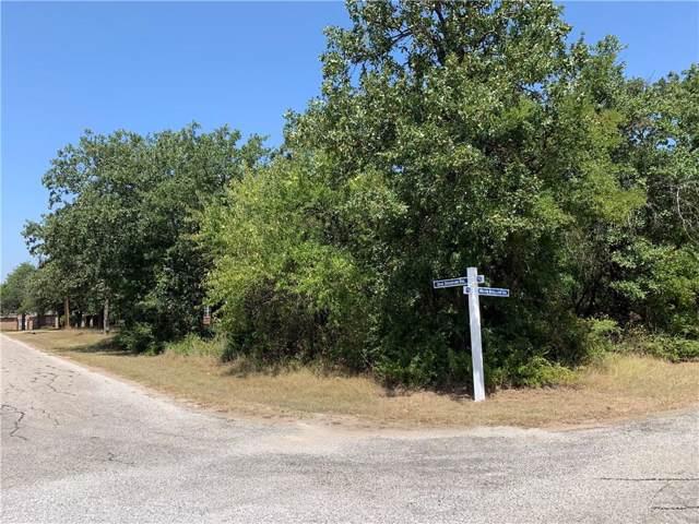 24136 Oak Shadow Drive, Whitney, TX 76692 (MLS #13997710) :: The Mauelshagen Group