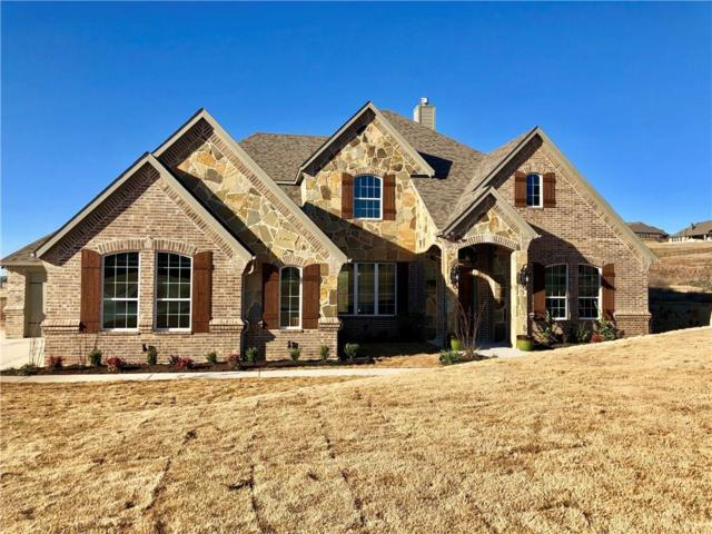 12448 Bella Vineyard Drive, Fort Worth, TX 76126 (MLS #14000222) :: Real Estate By Design