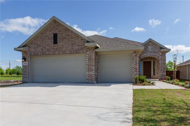 1668 Frankford Drive, Forney, TX 75126 (MLS #14000417) :: RE/MAX Town & Country