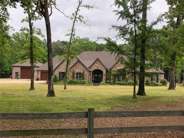 15030 Canopy Oaks Drive, Tyler, TX 75707 (MLS #14003029) :: Lynn Wilson with Keller Williams DFW/Southlake