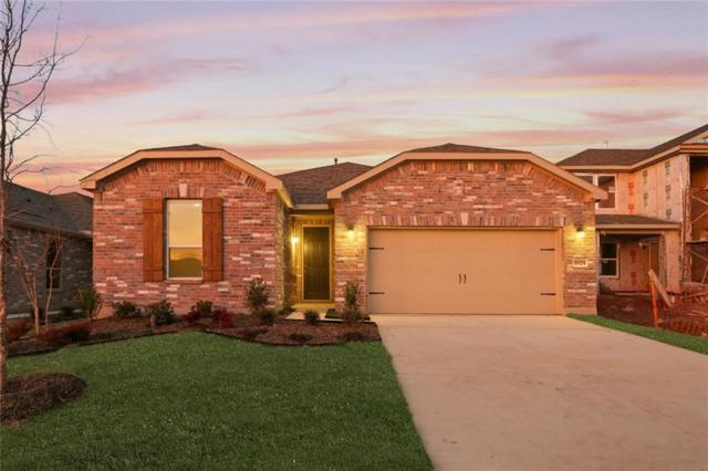 1024 Tule Drive, Aubrey, TX 76227 (MLS #14003904) :: RE/MAX Landmark