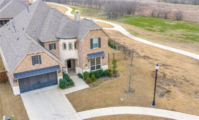 4911 Verbena Way, Prosper, TX 75078 (MLS #14011511) :: Kimberly Davis & Associates