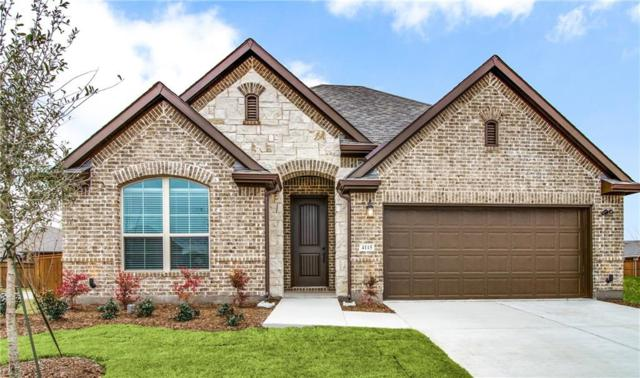 4115 Lightcreek Lane, Celina, TX 75009 (MLS #14015189) :: RE/MAX Landmark