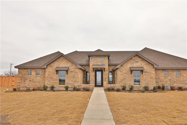 225 Contera Court, Abilene, TX 79602 (MLS #14017637) :: The Paula Jones Team   RE/MAX of Abilene