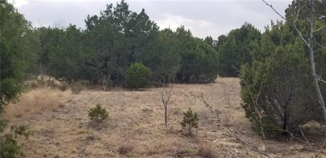 TBD 2 Loma Alto Court, Granbury, TX 76048 (MLS #14018334) :: The Heyl Group at Keller Williams