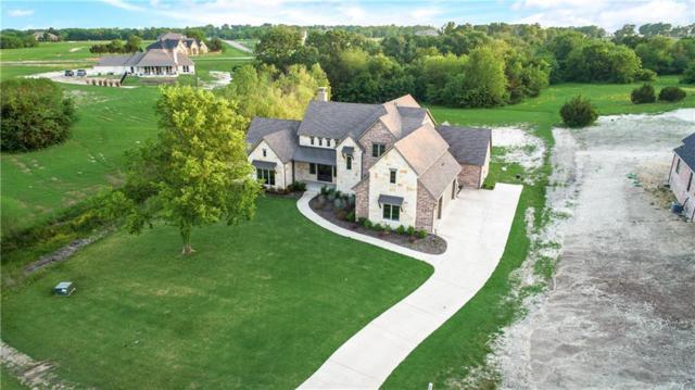 4594 Lake Shore Drive, Mckinney, TX 75071 (MLS #14020091) :: The Chad Smith Team