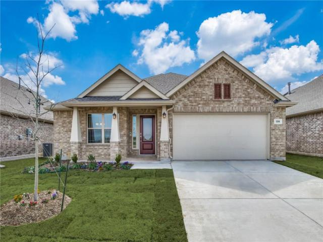 1316 Lake Grove Drive, Little Elm, TX 75068 (MLS #14025114) :: HergGroup Dallas-Fort Worth