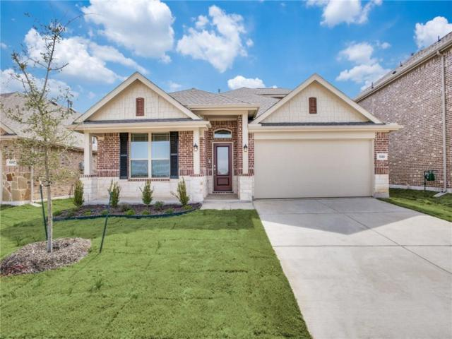1328 Lake Grove Drive, Little Elm, TX 75068 (MLS #14025598) :: HergGroup Dallas-Fort Worth