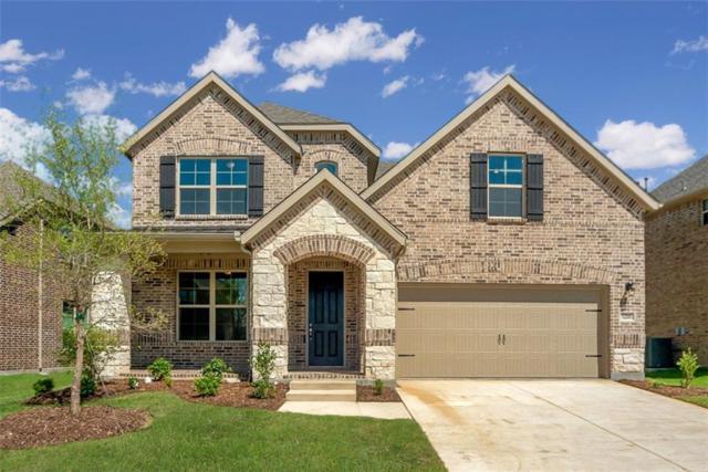 5208 Delta Blush Lane, Mckinney, TX 75070 (MLS #14026829) :: Kimberly Davis & Associates
