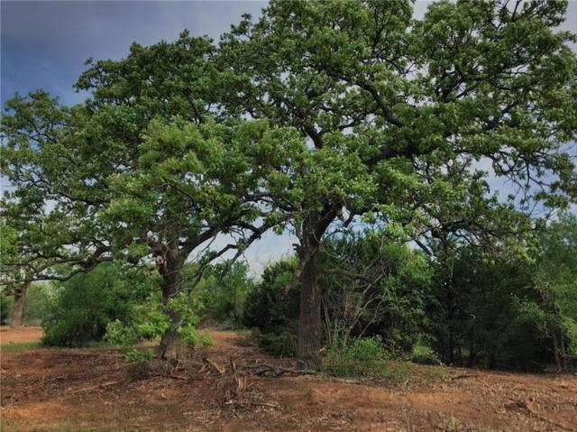 999 Hcr 2128, Whitney, TX 76692 (MLS #14026887) :: RE/MAX Town & Country