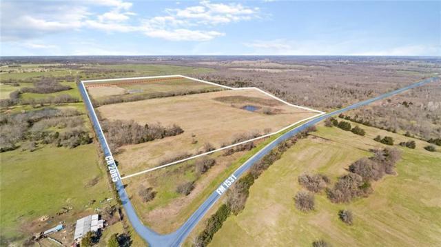 TBD Fm 1531, Klondike, TX 75448 (MLS #14030880) :: Bray Real Estate Group