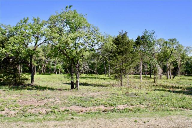 105 Oakwood Hills Dr, Paradise, TX 76073 (MLS #14034408) :: Team Hodnett