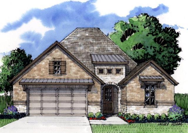2921 Cascada Way, Mansfield, TX 76063 (MLS #14034871) :: Team Hodnett