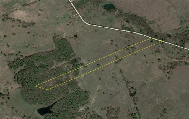 Lot 8 Nw Cr 4430, Blooming Grove, TX 76626 (MLS #14035552) :: The Kimberly Davis Group
