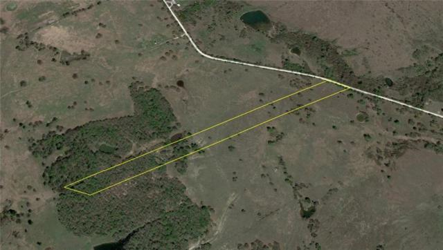 Lot 9 Nw Cr 4430, Blooming Grove, TX 76626 (MLS #14035562) :: The Kimberly Davis Group