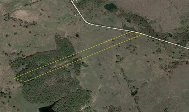 Lot 10 Nw Cr 4430, Blooming Grove, TX 76626 (MLS #14035567) :: The Kimberly Davis Group