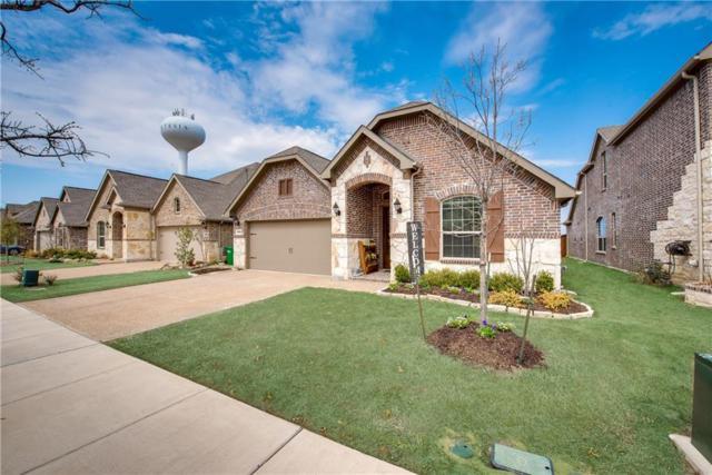 15909 Gladewater Terrace, Prosper, TX 75078 (MLS #14037682) :: Real Estate By Design