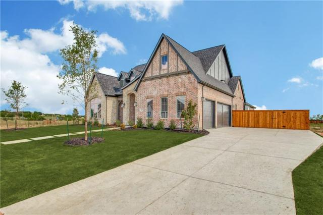 217 Wimberley, Haslet, TX 76052 (MLS #14041529) :: RE/MAX Town & Country