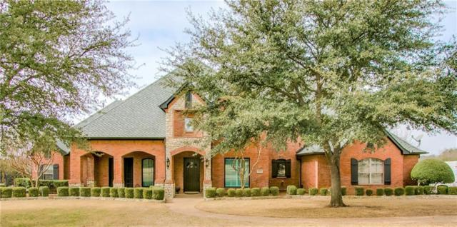 5003 Copperhill Circle, Parker, TX 75002 (MLS #14042017) :: Hargrove Realty Group