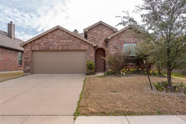 1141 Grimes Drive, Forney, TX 75126 (MLS #14043076) :: RE/MAX Town & Country