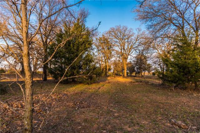 Lot 2 Knotted Oaks Way, Valley View, TX 76272 (MLS #14043459) :: The Heyl Group at Keller Williams