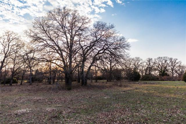 Lot 3 Knotted Oaks Way, Valley View, TX 76272 (MLS #14043476) :: The Heyl Group at Keller Williams