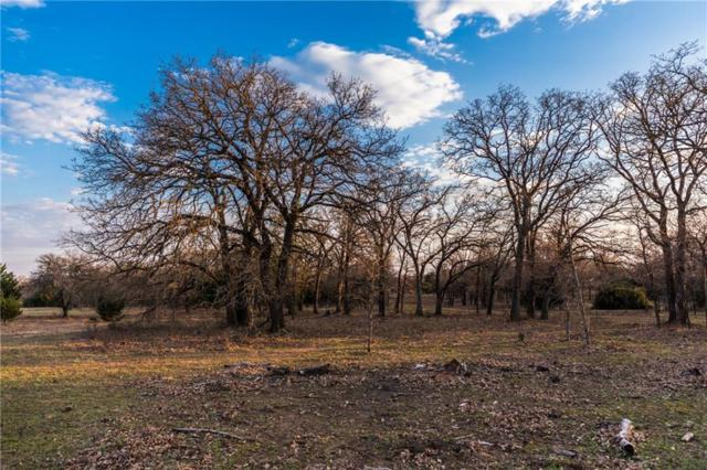 Lot 4 Knotted Oaks Way, Valley View, TX 76272 (MLS #14043485) :: The Heyl Group at Keller Williams