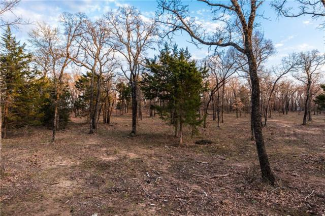 Lot 12 Knotted Oaks Way, Valley View, TX 76272 (MLS #14043505) :: The Heyl Group at Keller Williams