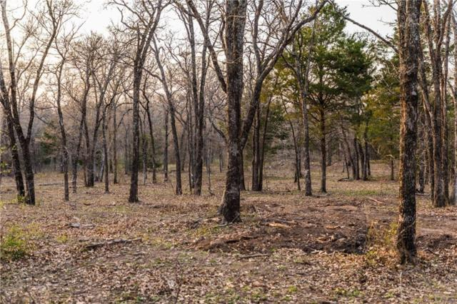Lot 11 Knotted Oaks Way, Valley View, TX 76272 (MLS #14043509) :: The Heyl Group at Keller Williams