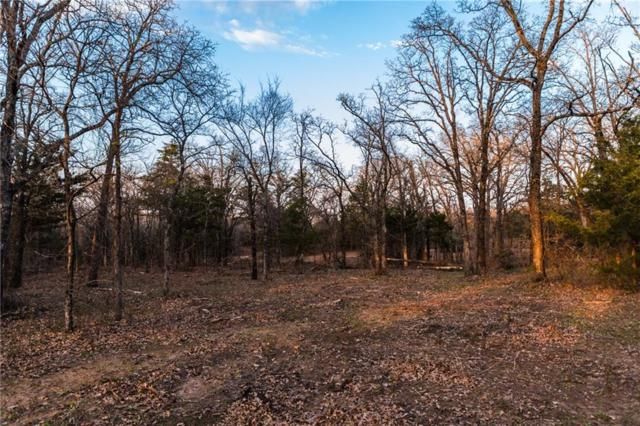 Lot 10 Knotted Oaks Way, Valley View, TX 76272 (MLS #14043511) :: The Heyl Group at Keller Williams
