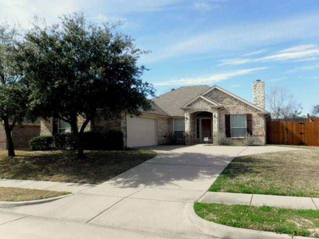 6060 Cedar Glen Drive, Grand Prairie, TX 75052 (MLS #14045106) :: The Heyl Group at Keller Williams
