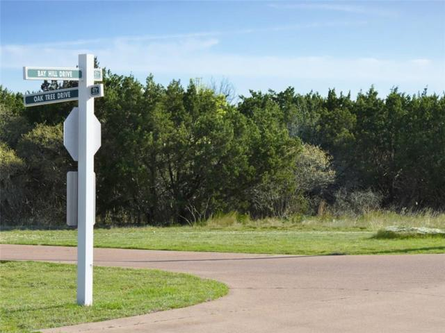 TBD Lot 192 Bay Hill Drive, Graford, TX 76449 (MLS #14046215) :: The Heyl Group at Keller Williams