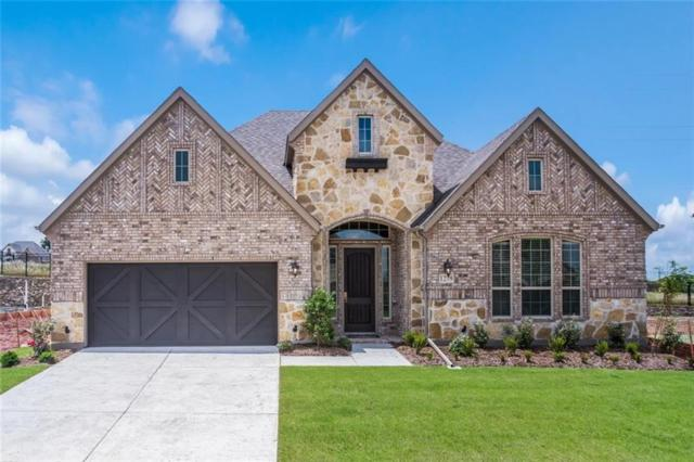 1279 Coneflower Drive, Frisco, TX 75033 (MLS #14050363) :: Lynn Wilson with Keller Williams DFW/Southlake