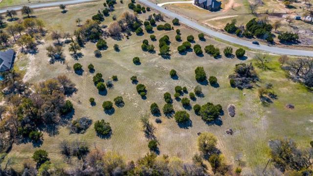 161 Creek Bend Drive, Poolville, TX 76487 (MLS #14052618) :: The Heyl Group at Keller Williams