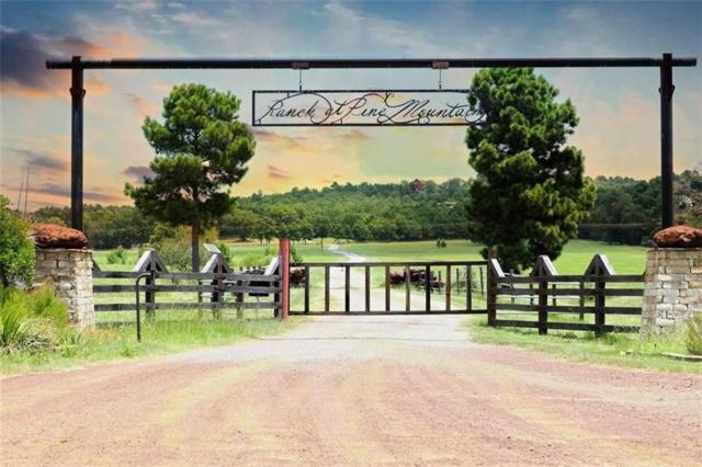 Lot 3 Acr 453, Montalba, TX 75853 (MLS #14055750) :: The Mitchell Group