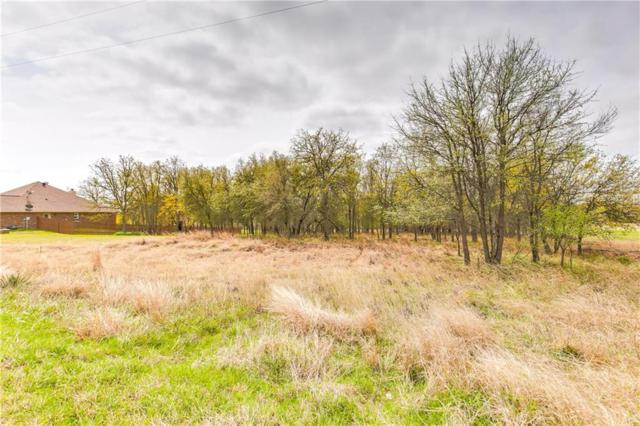 Lot112 Sandpiper Drive, Weatherford, TX 76088 (MLS #14055834) :: The Sarah Padgett Team