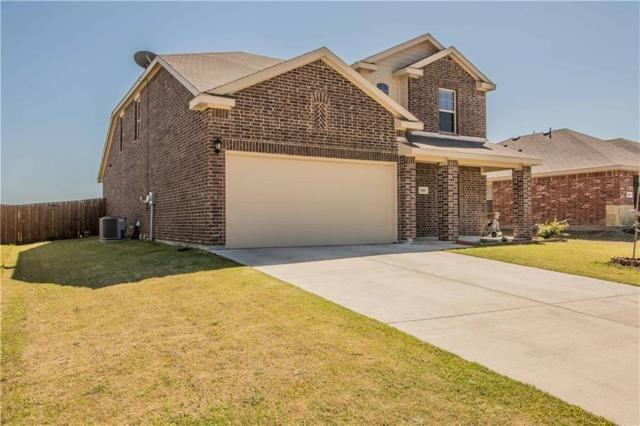 317 Plum Drive, Josephine, TX 75173 (MLS #14058392) :: RE/MAX Town & Country