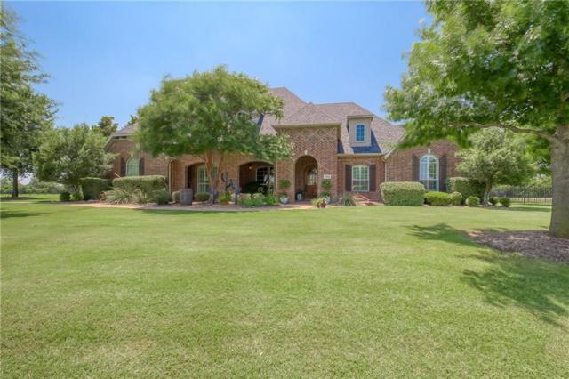 5205 Englenook Drive, Parker, TX 75002 (MLS #14058496) :: RE/MAX Landmark
