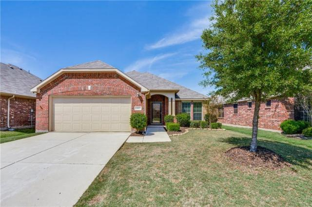 11817 Cape Cod Springs Drive, Frisco, TX 75036 (MLS #14059301) :: RE/MAX Town & Country