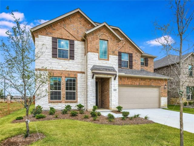 1020 Speargrass Lane, Prosper, TX 75078 (MLS #14062767) :: The Real Estate Station