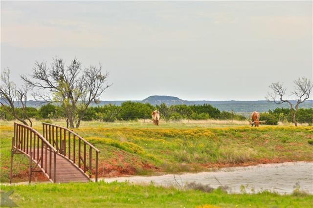 1681 County Road 150, Tuscola, TX 79562 (MLS #14065461) :: The Paula Jones Team | RE/MAX of Abilene