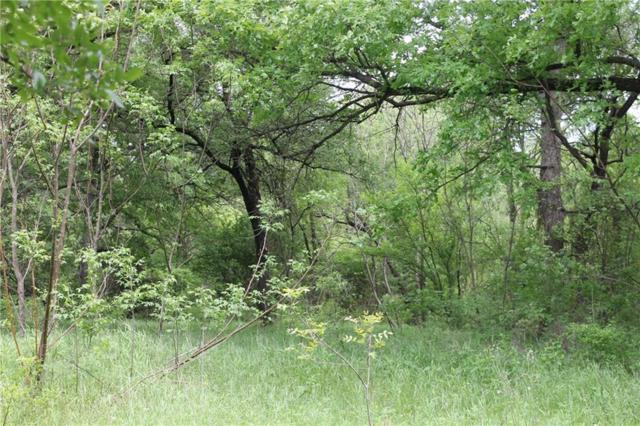 TBD Fm 2114, Aquilla, TX 76622 (MLS #14068578) :: Roberts Real Estate Group