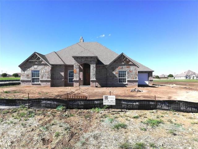 1114 Denton Creek Drive, Justin, TX 76247 (MLS #14070224) :: RE/MAX Town & Country