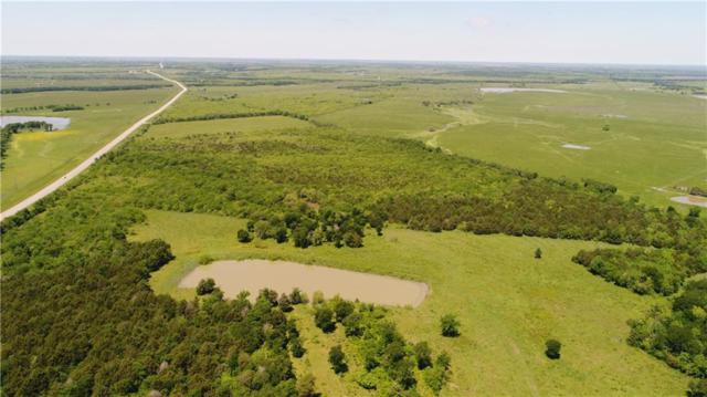 131 Fm 638, Tehuacana, TX 76686 (MLS #14073387) :: The Chad Smith Team